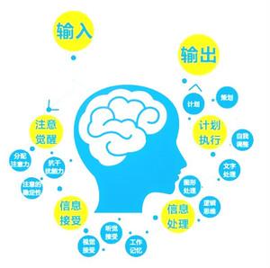 认知能力训练分析系统